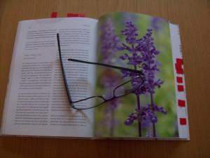 Duft-Medizin von Maria L. Schasteen, Foto: Margarete Rosen